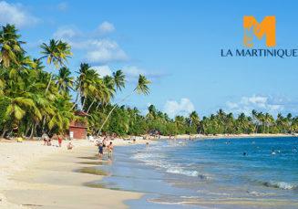 [FR] Programme Du Spécialiste De La Martinique