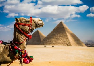 Egypt Specialist Course