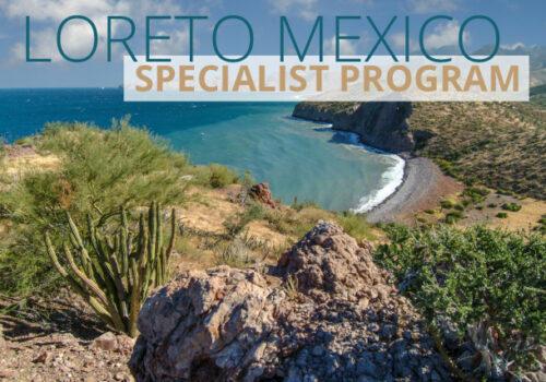 Loreto Mexico Specialist